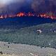 436 Hektare Hutan Terbakar, Gunung Merbabu Kini Tandus